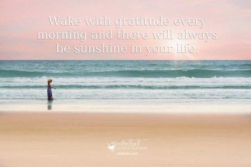 gratitude and sunshine